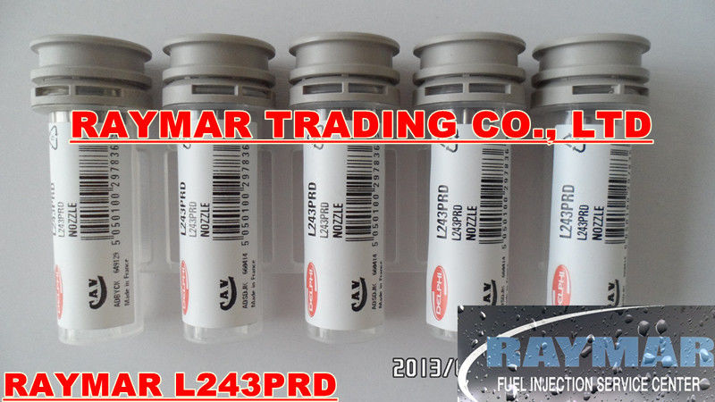 DELPHI common rail fuel nozzle L243PRD, L243PBD for EJBR03902D, EJBR03901D, 33800-4X400